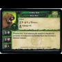 Ironfur Bear